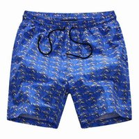 Wholesale new men summer quick dry shorts high quality brand designer men beach shorts men swimming skite shorts D6010 M XXL BLUE