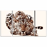 african animal paintings - LK3130 Panels Wild Animals Leopard Oil On Canvas Painting African Animal Wall Art Paintings For Bedroom Decor Ready To Hang Framed Uframed