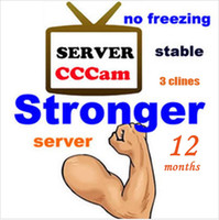 Wholesale Stable Best CCcam Europe Cline Server year account Satellite Decoder Spain UK Germany France Italy in1 RCA Cable DHL Free
