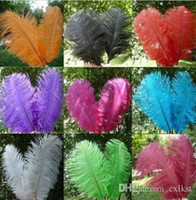 Wholesale Ostrich Feathers Plume Centerpiece for Wedding Party Table Decoration inch cm Brand New Good Quality