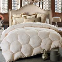 Wholesale 2016 New Sanding Warm Autumn Winter Comforter Soft Healthy Quilt Superior Autumn Dovet Twin Full Queen King Size Thicken Winter Quilt