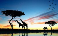africa lakes - Animals giraffe sunset africa lakes reflection elephant sky birds Silk Poster