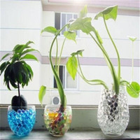 Wholesale Brand New Colorful Water Plant Flower Jelly Crystal Soil Mud Hydro Gel Pearls Beads Balls Sets TY01065