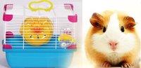 Wholesale Mini Desktop Pet Habitats Natural ECO friendly Colorful House with quot The treadmill quot Hedgehog Hamster Cavy removable Cages Pets Supplies