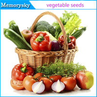 Wholesale seeds all kinds of different vegetable seed family potted balcony garden four seasons planting hot sale