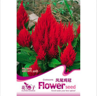 Wholesale Low Price Stylish Tail Celosia Cristata Flower Seeds Flowers Celosia Plumosa Garden Supplies Bonsai Flowers seeds
