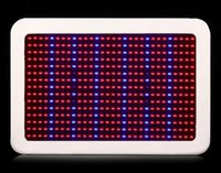 Wholesale 450W LED Grow Light Gardening Nursery Lamp Red and Blue Indoor Grow Lights Greenhouse Vegetables Flowers Led Spotlights