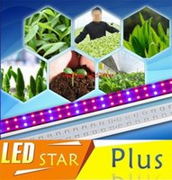 Wholesale High Quality T8 Led Lamp SMD3825 W W W W Led Plant Grow Lamp Tube Led Light For Greenhouse Plant Growth