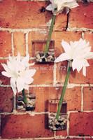 Wholesale 4pcs Transparent cm Glass wall flower vase Glass Terrarium office garden decoration wedding invitations