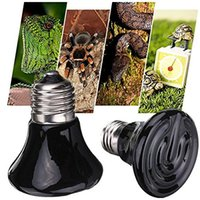 Wholesale New Arrival V Mini Black Ceramic Heat Infrared Emitter Lamp Bulb for Reptile Pet Brooder W W W W W