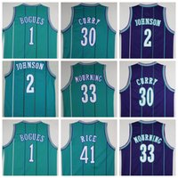 alonzo mourning - Cheap Tyrone Muggsy Bogues Jersey Throwback Larry Johnson Dell Curry Alonzo Mourning Glen Rice Retro Green Purple Team Color
