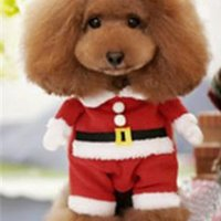 Wholesale Pet Christmas Costumes Christmas Gift Dog Clothes Puppy Dog at Apparel Clothing