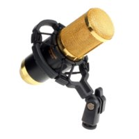 Wholesale New Sound Studio Dynamic Mic Shock Mount BM800 Condenser Microphone Cheap microphone modeler High Quality microphone singing