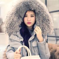 Wholesale Women s Winter Blue Coats With Real Fur Hood Long Female Winter Jacket Women Duck Down Feather Park Plus Size xl xl yrfnv