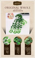 begonias plants - Green Begonia supply highly realistic plant vines wall furnishings Wall plastics simulation rattan