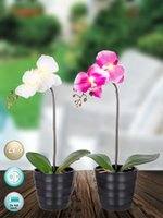 aa decoration - Led light AA batteries operated flower arrangement for home decoration party xmas decoration festival gift
