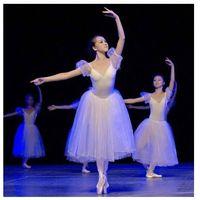 Wholesale New TUTU ballet dress adult ballet stage performances white swan fairy ballet costumes