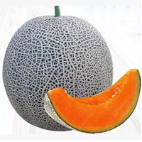 Wholesale very sweet fruit melon seeds Japanese type water melon seeds