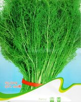 aniseed seed - Fennel Seeds Foeniculum Vulgare Aniseed Vegetable Plants C019