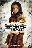 arts trial - The Maze Runner The Scorch Trials Silk Movie Poster x36 inch