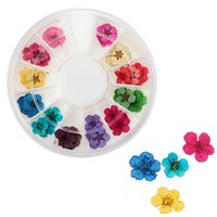 assorted nail designs - Best Price Set Real Dry Dried Flowe Nail Art Designs Tools Acrylic Tips UV Gel Decorations Assorted For Women Hotting