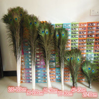 Wholesale HOT SALE inch cm Beautiful Natural Peacock Feathers for eyes for DIY Clothes decoration KQY