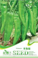 absorption of food - 30 Green Clevis Pepper Seeds Conducive to digestion and absorption of food C077