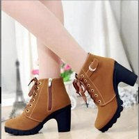 aa female - Autumn shoes woman high heels thick heel ankle boots for women motorcycle boots platform boots female lace up botas femininas