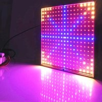 Wholesale W LED Grow Lights Red Yellow Blue SMD3528 Full Spectrum LED Plant Lamp Hydroponic Grow Lighting AC85 V