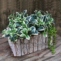 wooden planter - High quality pastoral handmade wooden flower pot Succulent plants planter Artical flower vase home decoration RA1274