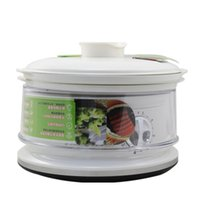 Wholesale electric steamer double folding collection seconds fast steam