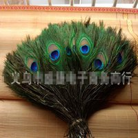 Wholesale Elegant decorative materials Real Natural Peacock Feather Beautiful Feathers about to cm Party Use Peacock Feather