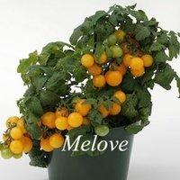 Wholesale Yellow Cherry Tomato Non Gmo Vegetable Seeds Easy to Grow DIY Home Garden Bonsai Vegetable