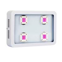 Wholesale 800W COB LED Grow Lights Full Spectrum for Plants Growing and Flowering Grow Light LED for Indoor Plants