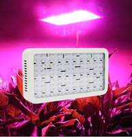 Wholesale 900W Double Chips W LED Grow Light Full Spectrum For Indoor Plants and Flower Phrase High Yield Hydroponic