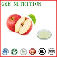 apple polyphenol extract - Natural Apple Extract powder with Proanthocyanidins Polyphenol Phlorizin g