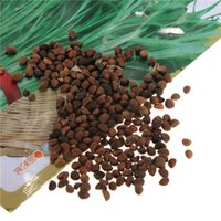 Wholesale High Quality Water Spinach Bamboo Large Leaf Organic Swamp Green Fresh Vegetable Seeds Balcony Garden Fruits Vegetables