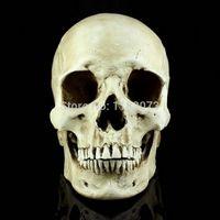 Wholesale Medical Skull Balaclava Masks Realistic Skeleton Human Skull Model Deguisement Mask Halloween Carnival Costume