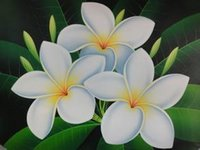 Wholesale Plumeria rubra mixed colors Egg flower pieces one pack simple package Home Garden