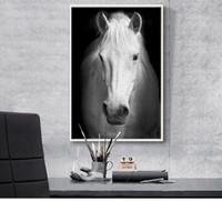 Конные фотографии Цены-современного искусства животные холст картины современный дом искусства рекомендация черный спальня гигантский черно-белые фотографии плакат Лошадь
