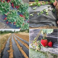 agricultural plastic film - Black agricultural film x20m strawberry PE film garden flower greenhouse plastic garden mulch film mm thick
