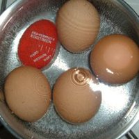 Wholesale Egg Perfect Color Changing Timer Yummy Soft Hard Boiled Eggs Cooking Kitchen