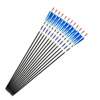 Wholesale New Arrival Carbon Shaft Arrows with Blue and White Turkey Feather of Spine for Hunting Bow