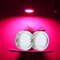Wholesale 2Pcs Leds W LED Plant Grow Light Full Spectrum Medical Hydroponic VEG Lamp