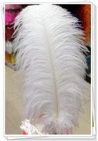 Wholesale white and black quot quot CM baby headwear ostrich feather plumage flapper dresses for craft DIY accessories lotF6