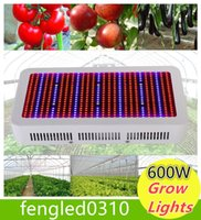 Wholesale Grow Lights High Quality W Full Spectrum LED Grow Light Red Blue White UV IR AC85 V SMD5730 Led Plant Lamps years warranty