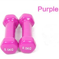 Wholesale plastic dip multicolour in dumbbell child home fitness sports equipment for and kylin sport
