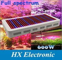 led grow lights - High Quality W Full Spectrum LED Grow Light Red Blue White UV IR AC85 V SMD5730 Led Plant Lamps years warranty
