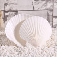 aquarium fans - Natural conch shell hand painted special offer large white Scallop in Shell Scallop in Shell white wall aquarium gift fan grill