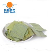 Wholesale 50g Chinese herb tea organic dried slimming lotus leaf tea
